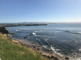 4/29: a completely magical day spent in Santa Cruz