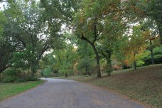 Arnold Arboretum: trails to bike/walk/run, shade in summer and foliage in fall, a truly gorgeous place