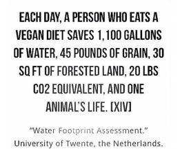 vegansaves