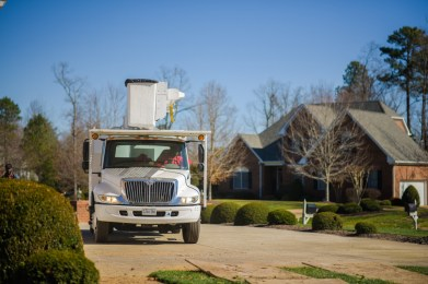 Tree care: Blazer Tree Services, Richmond VA area
