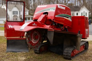 Stump grinding: Blazer Tree Services, Richmond VA area