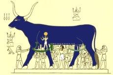 hathor_sky_cow