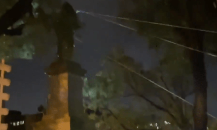 Protesters topple the Albert Pike statue in Washington DC