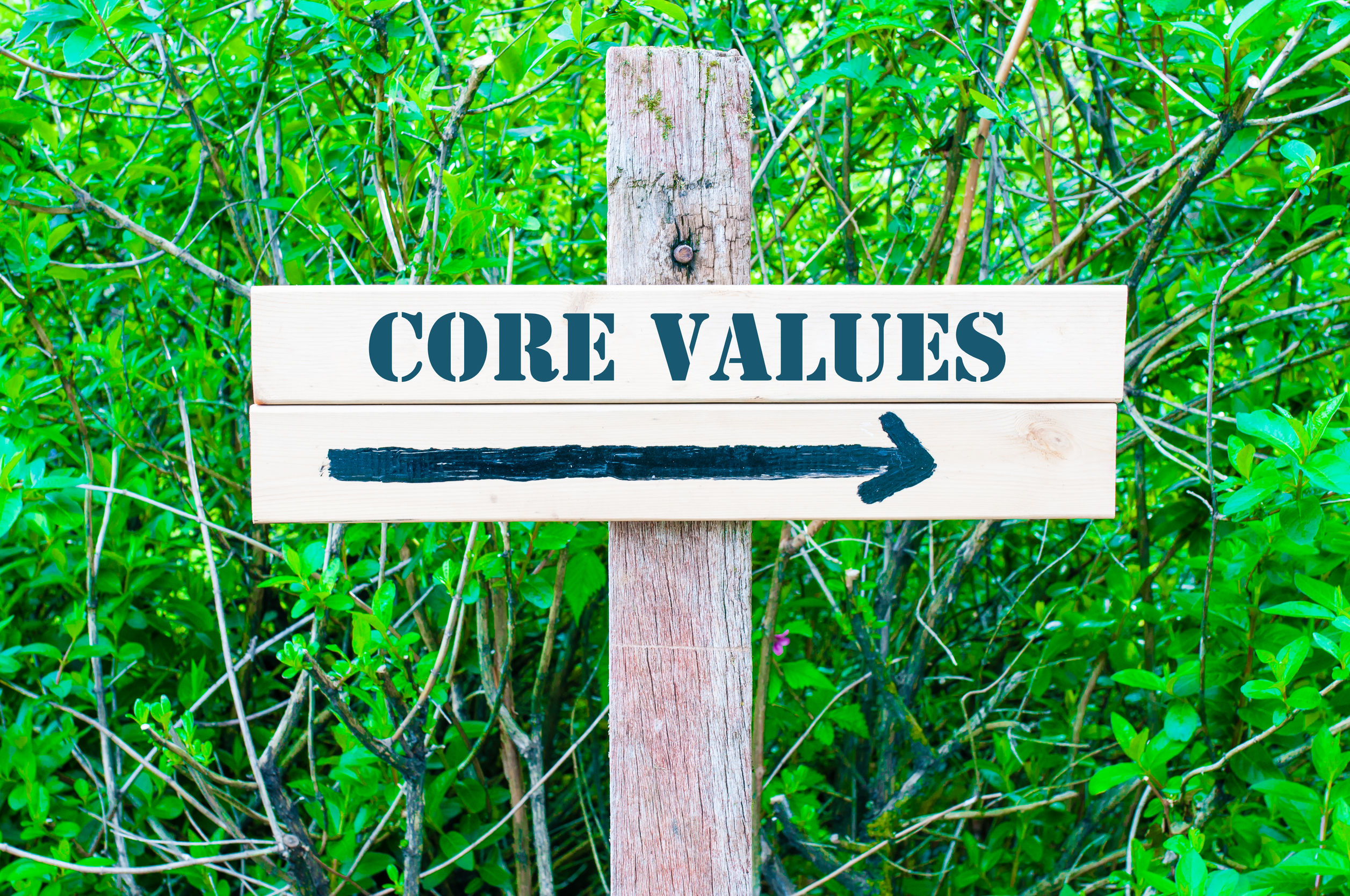 Core Values to Guide You to Your Goals