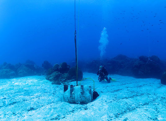 Operation Deep Sleep: or, dormant robots at the bottom of the sea