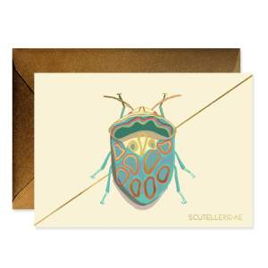 Teal Beetle Stationery Boxed Set Of 6 Cards