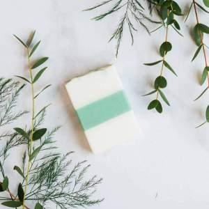White Tea and Ginger Body Bar