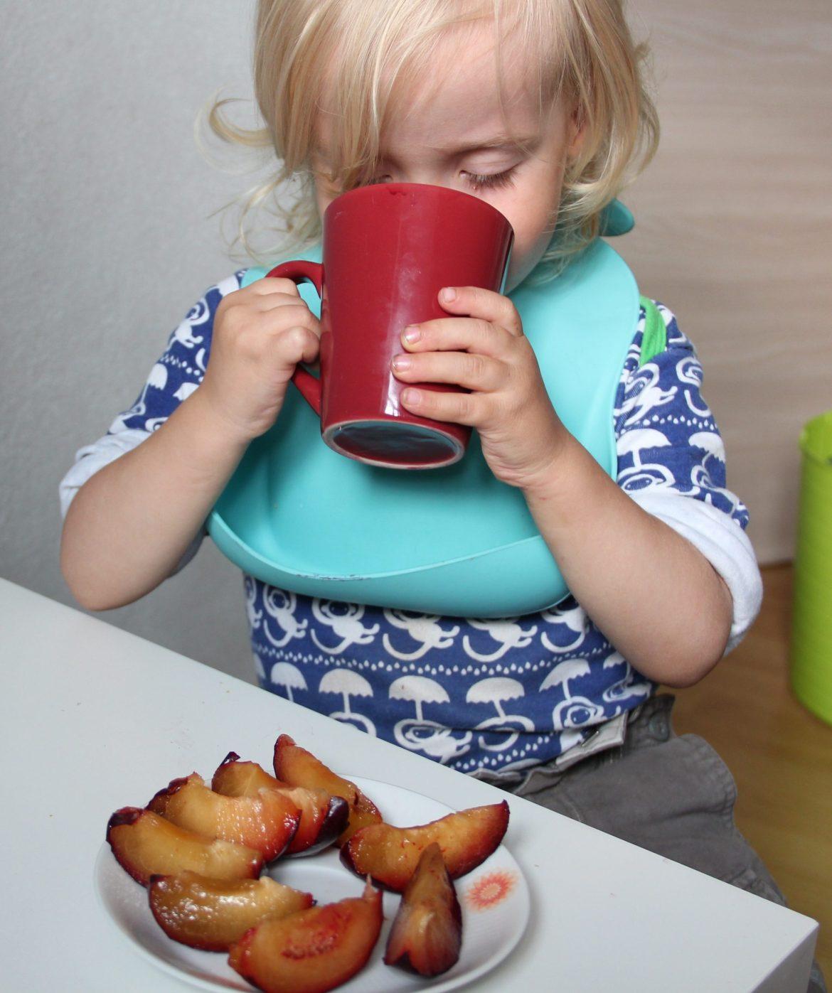 Holunderbeersaft selber machen