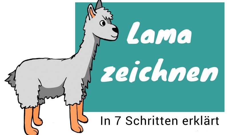 Lama zeichnen lernen