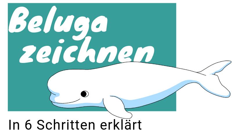 Anleitung zum Wal zeichnen: Beluga