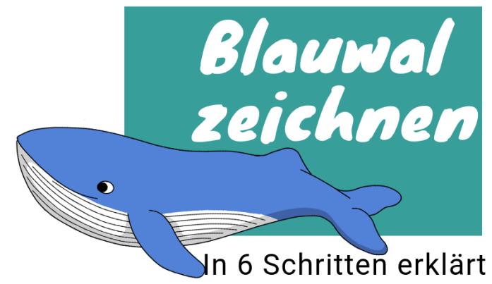 Blauwal zeichnen lernen