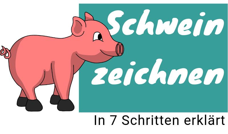 Schwein zeichnen lernen