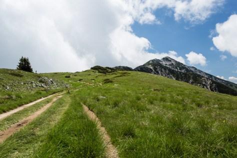 Rauf auf den Berg