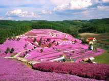 "Hokkaido Prefecture – Japan, Facebook page ""Amazing Pictures"", https://www.facebook.com/killerpics"