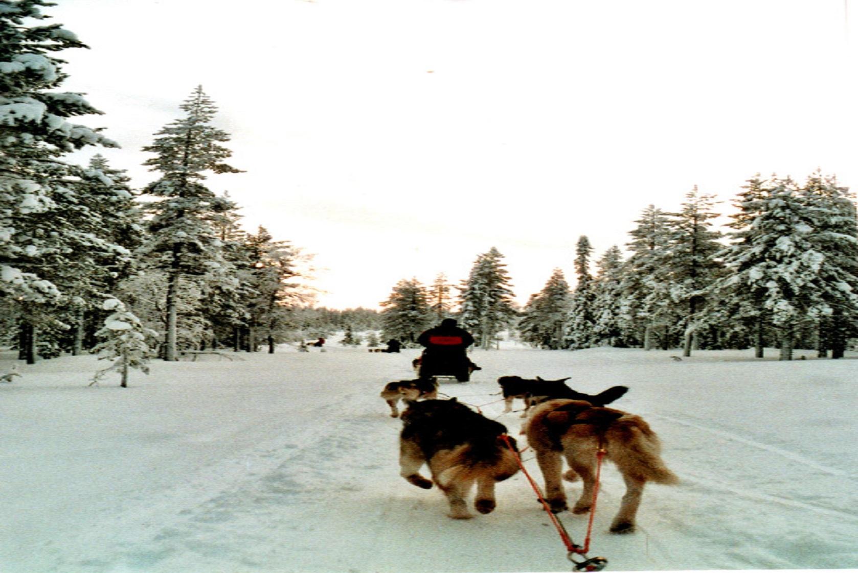 bien-passer-l-hiver_pour page à découvrir