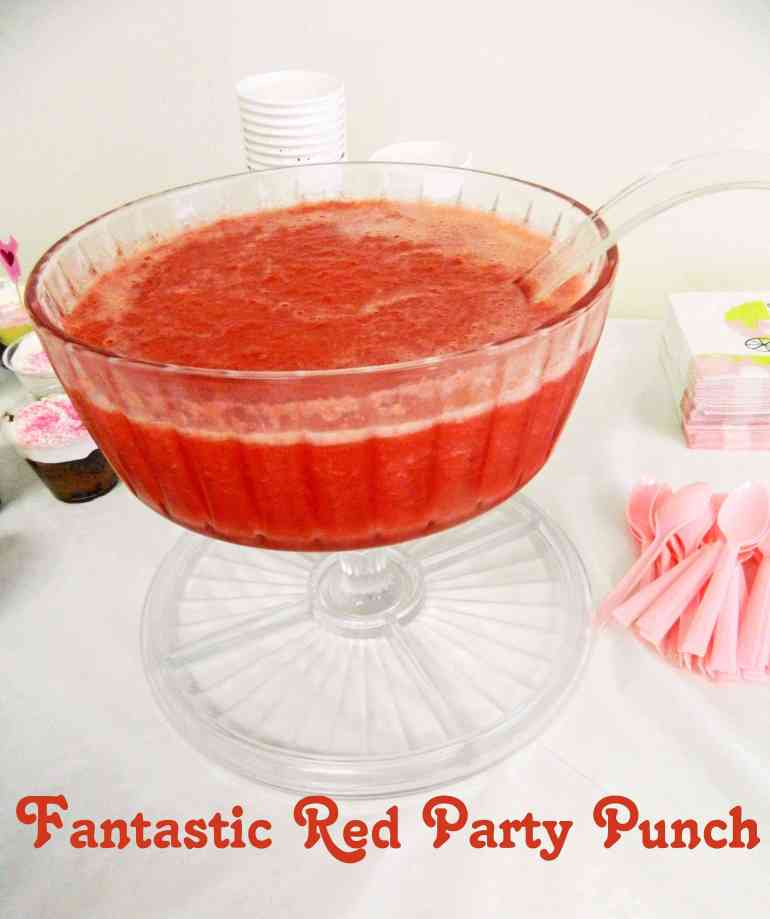 Party Punch 3_6