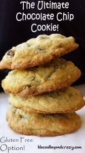 chocolate chip cookies4_edited-1