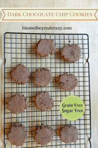 grain free sugar free dark chocolate chip cookies