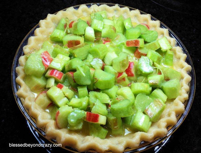 Rhubarb Pie 6