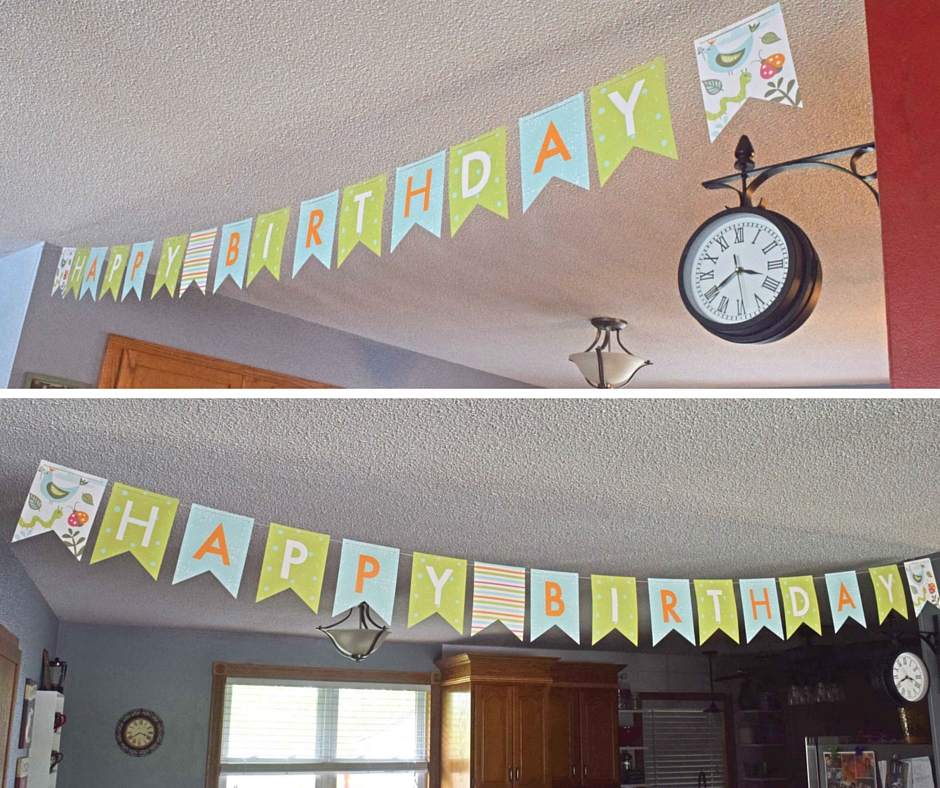 Minted Birthday Banner