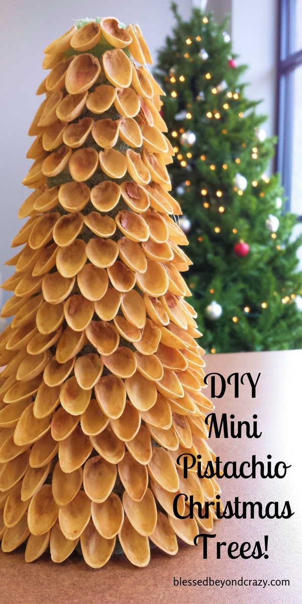 DIY Mini Pistachio Christmas Trees