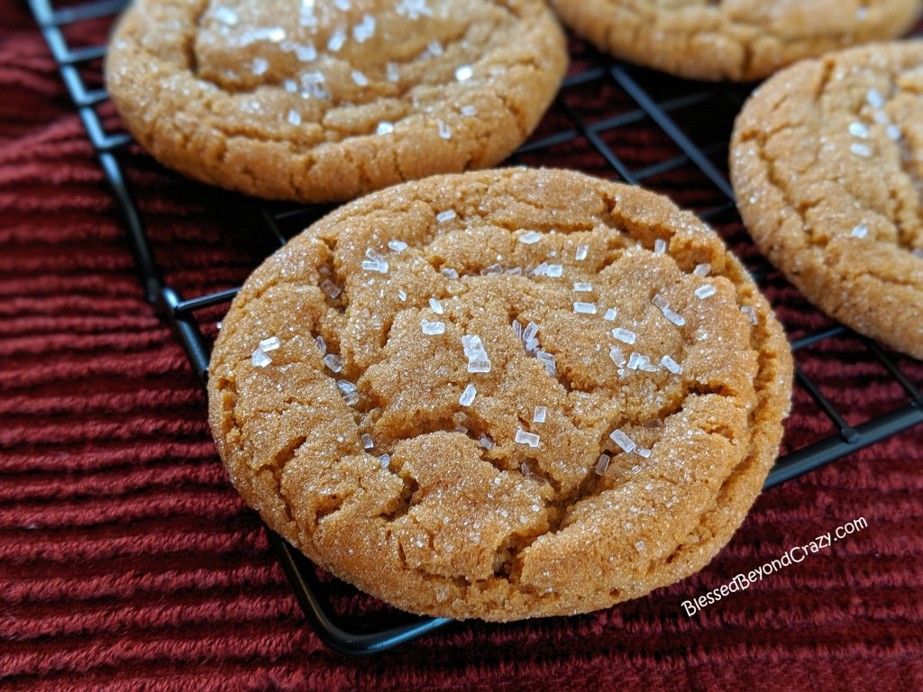 Close up view of Quick and Easy Ginger Snap Cookies