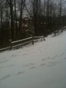 Snow storm in north georgia