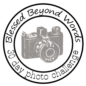 30 Day Photography Challenge – Topics