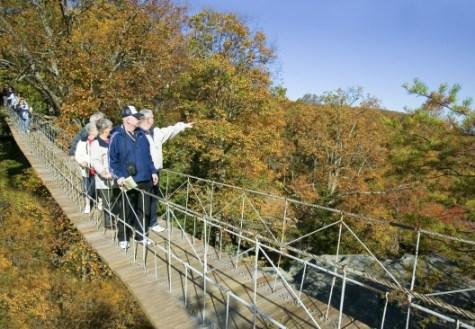 Long swinging bridge photos
