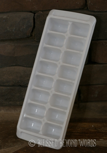 ice cube tray for baby food