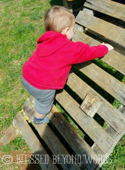 sip n seek climber