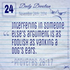 Daily Devotion • November 24th • Proverbs 26:17 ~Interfering in someone else's argument is as foolish as yanking a dog's ears.