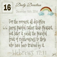 Daily Devotion • December 16th • Hebrews 12:11 ~For the moment all discipline seems painful rather than pleasant, but later it yields the peaceful fruit of righteousness to those who have been trained by it.