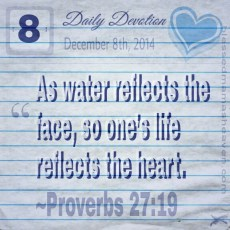 Daily Devotion • December 8th • Proverbs 27:19 ~As water reflects the face, so one's life reflects the heart.