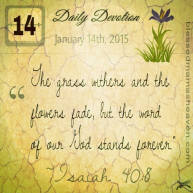 "Daily Devotion • January 14th • Isaiah 40:8 ~""The grass withers and the flowers fade, but the word of our God stands forever."""