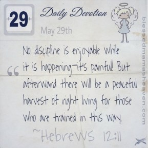 Daily Devotion • May 29th • Hebrews 12:11 ~No discipline is enjoyable while it is happening—it's painful! But afterward there will be a peaceful harvest of right living for those who are trained in this way.