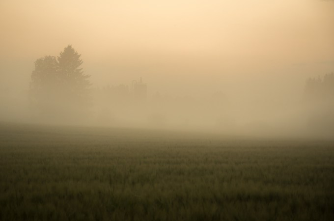 Confused by the Mist? Six Keys to Finding Your Way