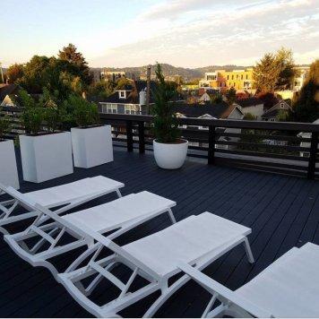 Modern Rooftop Garden
