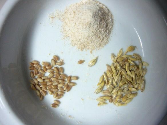 自磨全麥粉(上) 小麥(左) 小麥與麥麩(右)