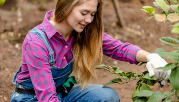 10 Gardening Apps that Every Gardener Should Have ~ Page 11