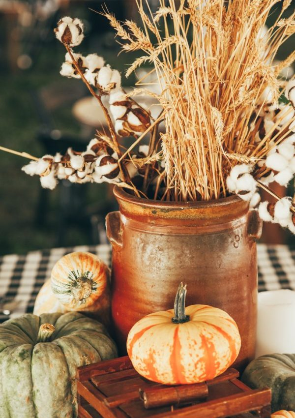 Farm To Table Dinner- Fall Table Vignettes