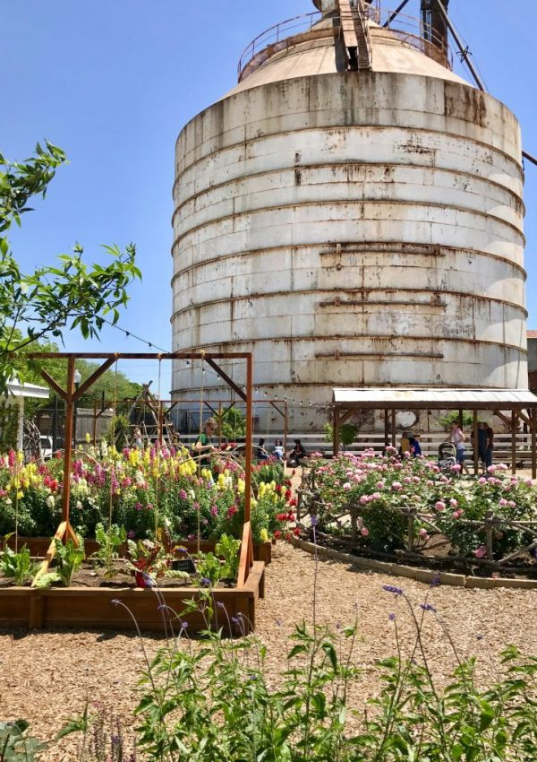 All About My Trip To Magnolia Silos- My Tips On How To Make the Most Of Your Visit