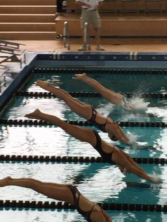 My daughter diving in for the 1000 free during a dual meet. Utes vs. USC.