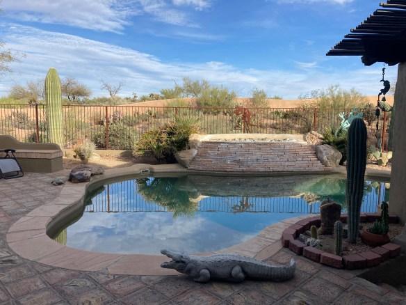 Backyard pool in Arizona