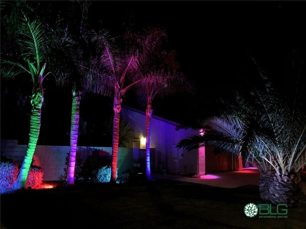 alliance outdoor lighting bluetooth