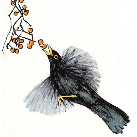 Illustration Taichi 1