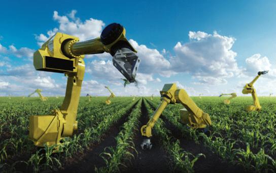 Teknologi Pertanian Jepang Yang Canggih Dan Modern Blick Media