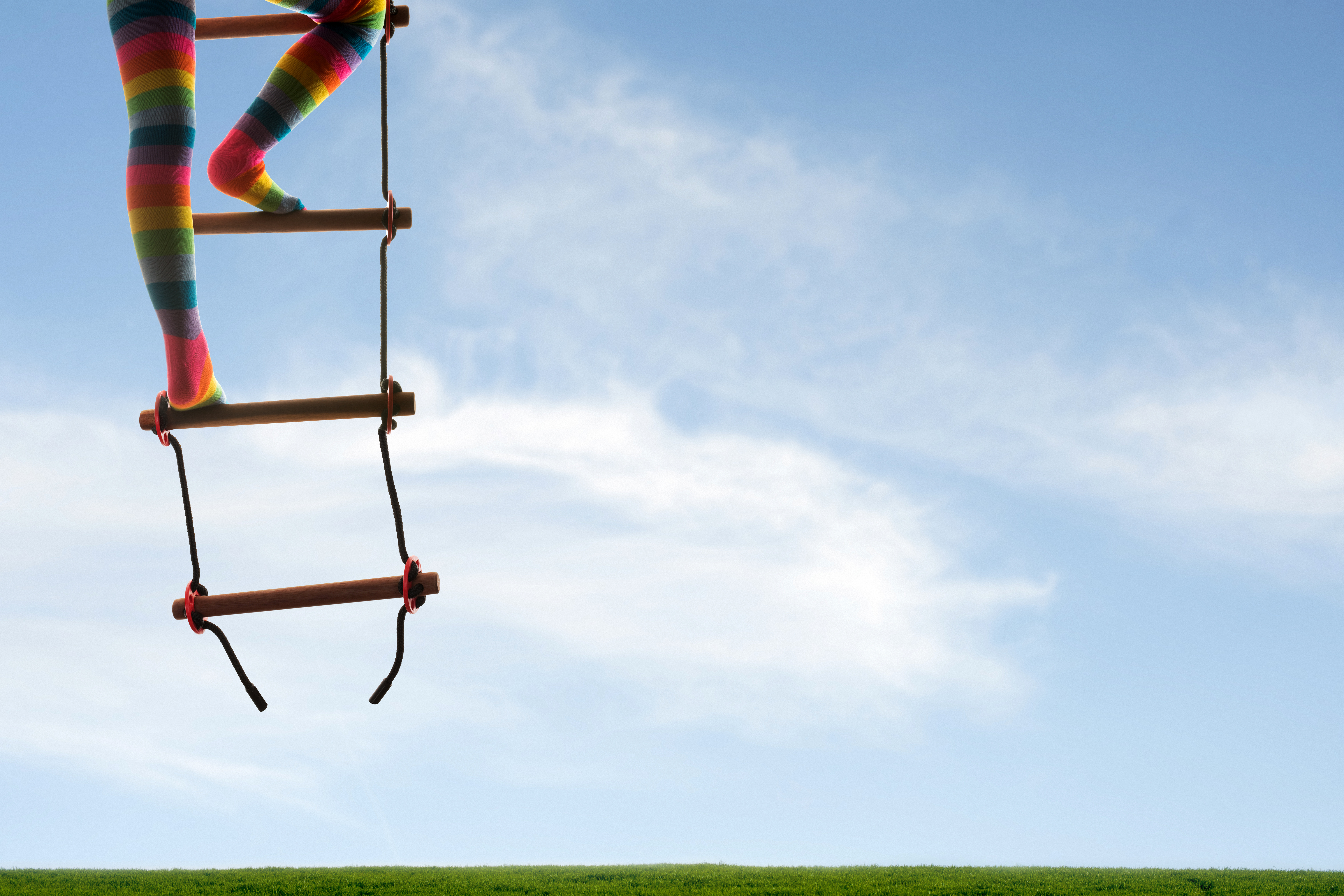 the ladder of success