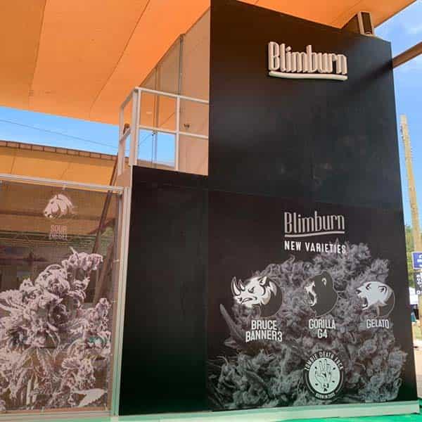 blimburn shows4