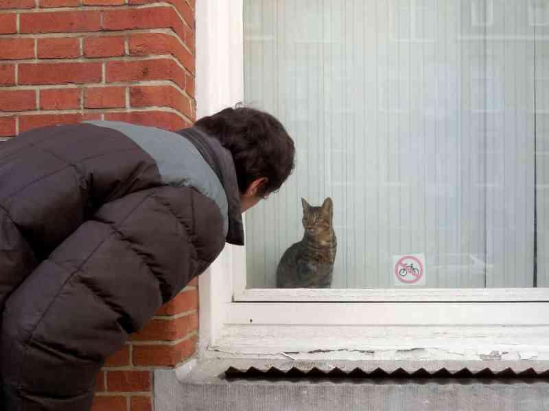 Raamkat op de Admiraal de Ruijterweg en de man die voor de kat zorgt.